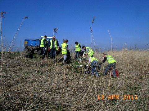 Trent Bank Clean Up (14)