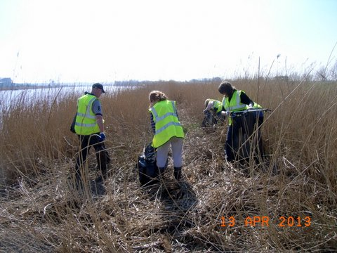 Trent Bank Clean Up (19)