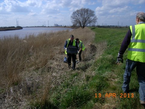Trent Bank Clean Up (3)