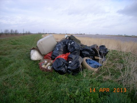 Trent Bank Clean Up (8)